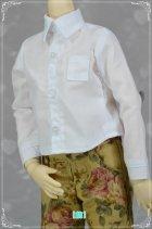 他の写真3: SD男の子用 Yシャツの型紙