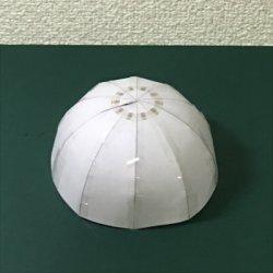 画像1: 半球展開図10分割 直径100cm
