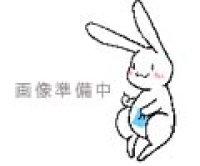 その他(ディズニー関連)