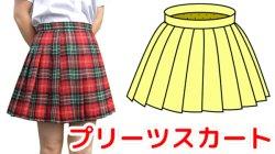 画像1: 20本プリーツスカートの型紙 レディース