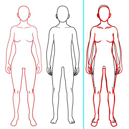 体型比較をしてみました