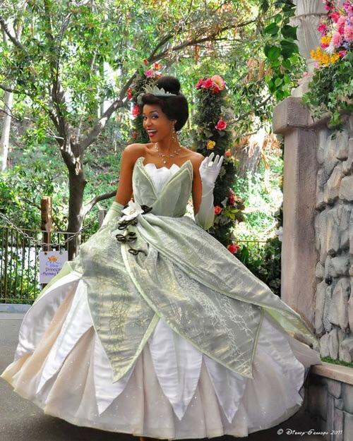 プリンセスと魔法のキス ティアラのドレス